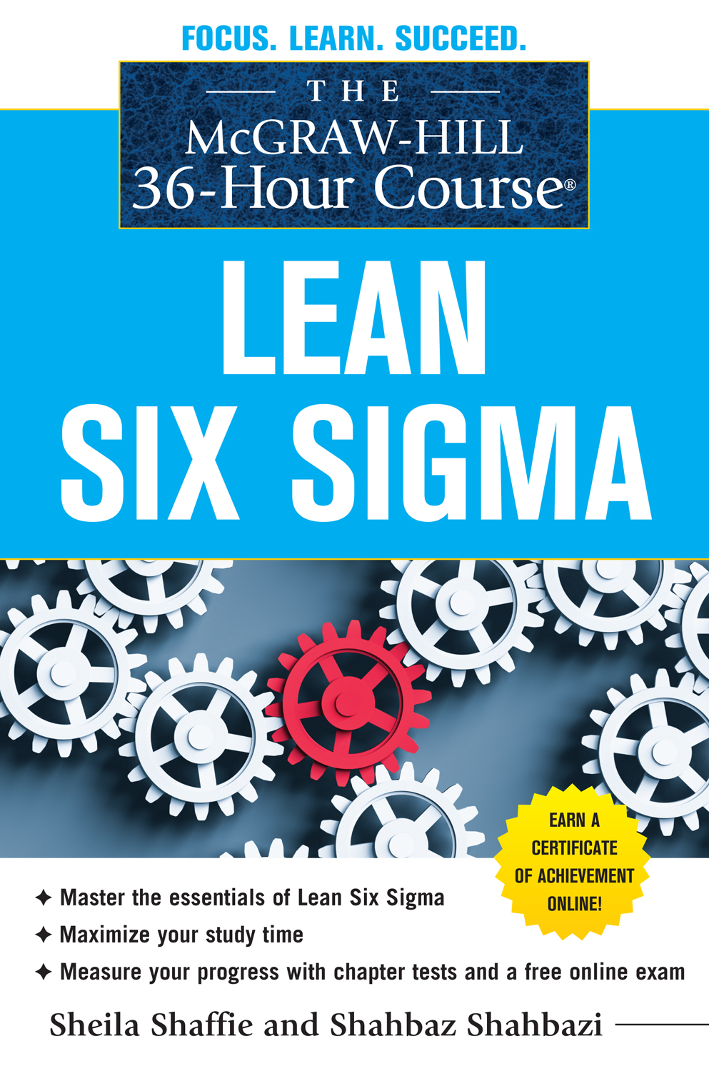 Master thesis six sigma